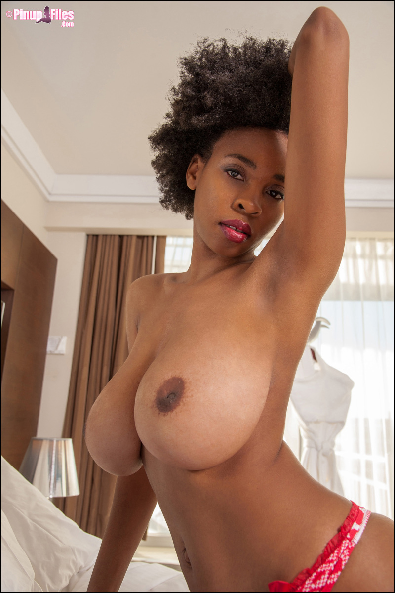 blackporn julie anderson - vol. 1 - set 2 - big busty encore!